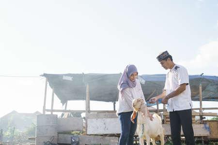 muslim couple buy a goat for eid adha sacrifice or idul qurban Stock Photo