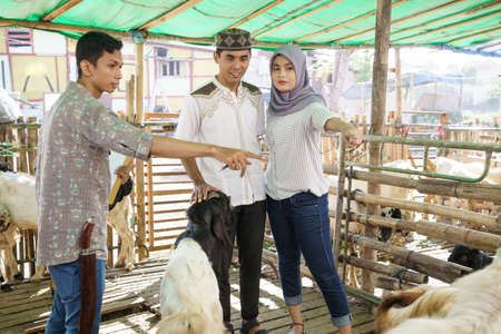 muslim couple at animal trade farm buying a goat Stock Photo