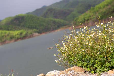 The abundant reservoir in northern Thailand.