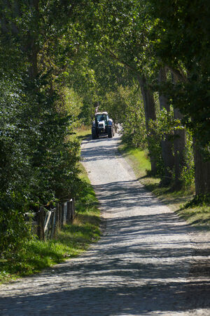 bumpy road: bumpy road in the country with close trees and tractor