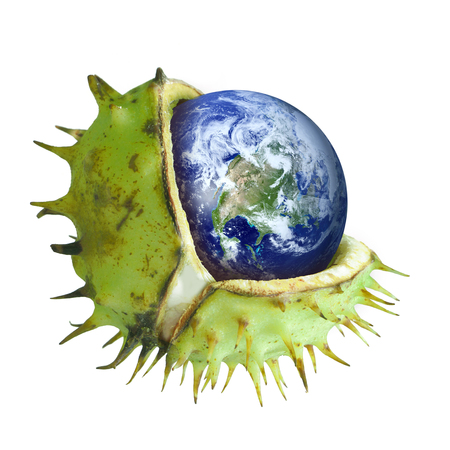 greenhouse gas: Globe protected in a broken chestnut shell, symbol of environmental conservation, ozone layer, greenhouse gas, collage