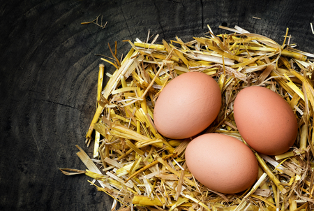 three eggs in a nest of golden straw on a dark wooden background with copy space