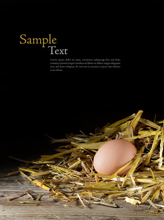 eggs in a nest of golden straw on wood against a dark background, sample text in the copy space, upright