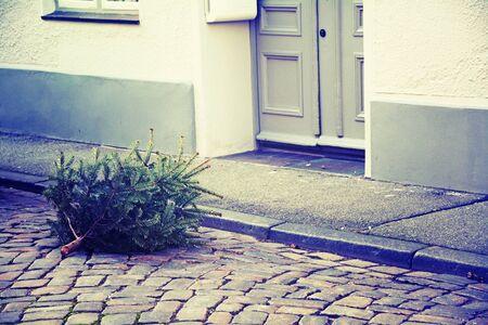 old tree: disused christmas tree thrown on the street, vintage style