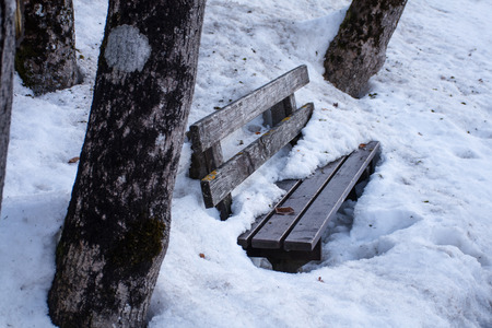 better days: winter scene, park bench made of wood between tree trunks covered with dirty old  snow. waiting for better days Stock Photo