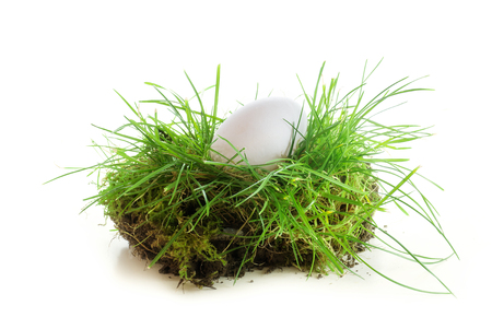 albrecht: white egg in a piece of turf with topsoil in the spring when easter is near and the gardening begins, isolated against a white background Stock Photo