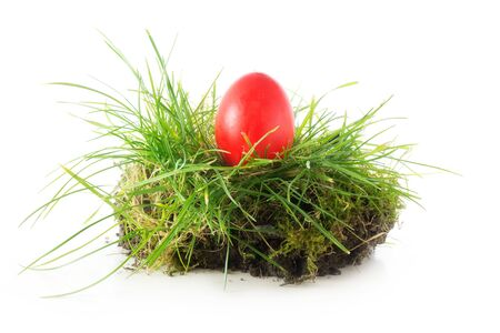 topsoil: red easter egg in a piece of turf, grass and topsoil isolated on white background