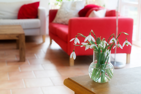 private room: vase with snowdrops on a table in the living room, interior blurred in the background Stock Photo
