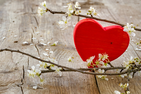 red heart shape made of wood with blooming branches from plum on a rustic wooden background, love symbol for valentines day or mothers day