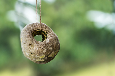 hag: hag stone, stone with a natural hole as garden decoration or protection amulet,  blurred green background with copy space