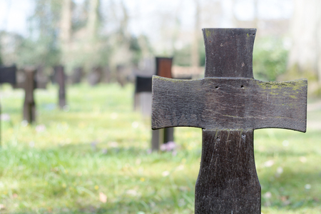 anonym: Dark wooden crosses on a military cemetery, copy space