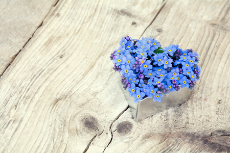 heart shape with blue forget-me-not flowers on a rustic wooden board, copy space in the background photo