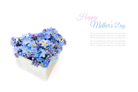 forget-me-not flowers in a silver heart shape isolated on a white background, sample text happy mothers day photo