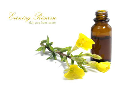evening primrose oil: Yellow evening primrose (Oenothera biennis) flowers and a small bottle with oil, cosmetics and natural remedies for sensitive skin and eczema, isolated on a white background, sample text