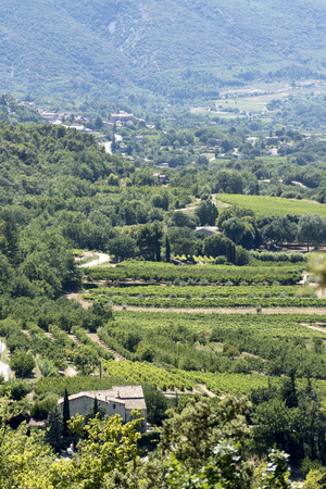 fields and meadows: aerial view, typical landscape in South Europe with an old winery, vineyards, fields, meadows and mountains, Provence, France, vertical