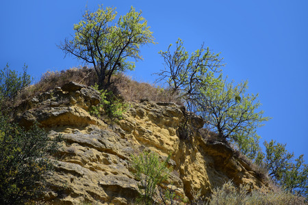 luberon: landscape with ocher rocks and bushes against the blue sky, Cadenet, Provence, region Luberon, south of  France