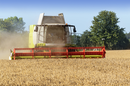 fall harvest: Dassow, Germany, August 13, 2015: combine harvester on a golden wheat field Stock Photo