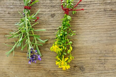 wort: fresh bunches of St. Johns wort and lavender hanging to dry in front of rustic wood Stock Photo