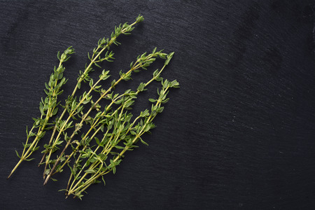 fresh green thyme, Thymus vulgaris, on a dark slate background with copy space Imagens