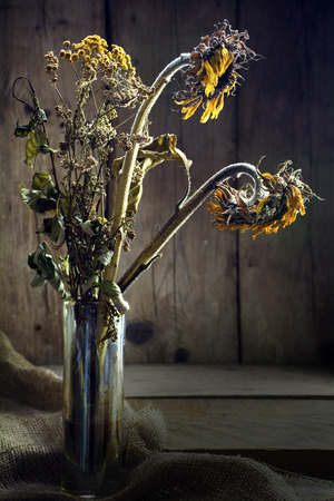 sidelight: withered bouquet with golden sunflower and tansy in sidelight on rustic wood, selected focus