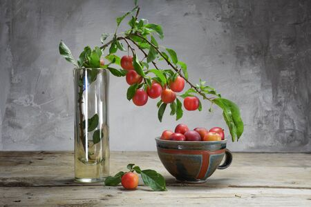 ambiente: wild red plums on a branch in a vase and in a pottery bowl on an old wooden table in front of a rustic plaster wall, copy space
