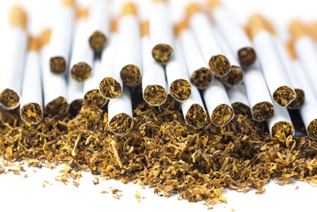 vices: many filter cigarettes on a heap of loose tobacco, view from the front, blurred in the background, close up with selected focus and narrow depth of field on a white background