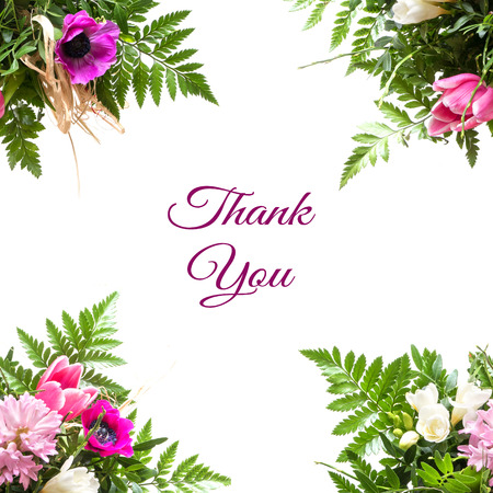 four corners: four corners with light pink and purple spring flowers isolated on a white background, sample text in the middle: thank you Stock Photo