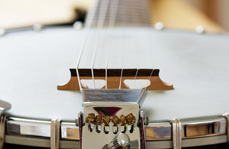 resonator: Detail of a metallic banjo 6 strings as music background, selected focus and narrow depth of field, copy space