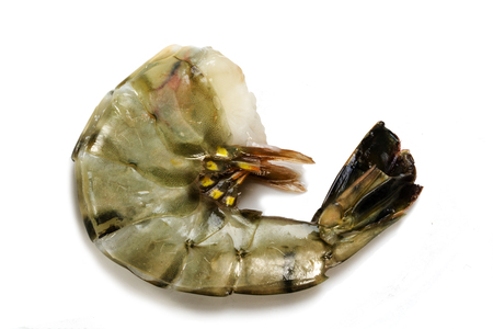 fresh raw black tiger prawn without head ready to grill or cook,close up shot  isolated with shadows on a white background Standard-Bild