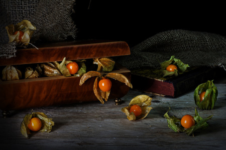 life metaphor: physalis fruits escape from a vintage jewelery box on a rustic wooden table, still life metaphor in painting style, concept for freedom, dark background with copy space
