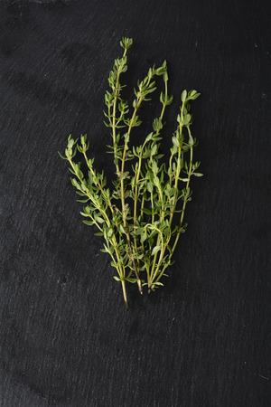 thymus: fresh green thyme, Thymus vulgaris, on dark slate with copy space,  vertical Stock Photo