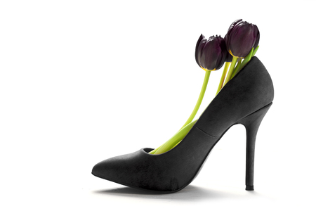 birthday greetings: Dark tulisps in a ladies black high heel shoe in profile, isolated with shadows on a white background, copy space