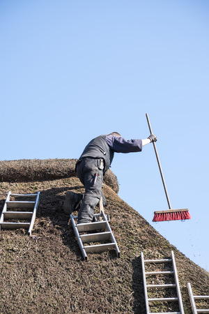 thatcher: roofer with ladders on a thatched roof to remove moss and dirt with a broom, blue sky with copy space