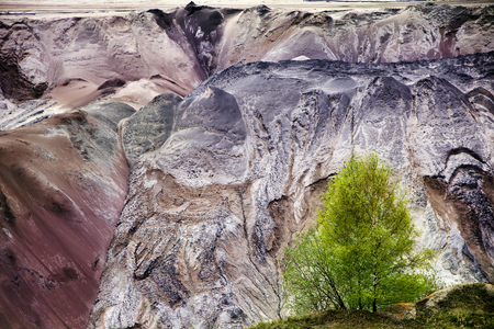 slag: young birch trees in front of the ruined layers of soil with landslides of slag and sand at the lignite (brown coal) open pit mining, Garzweiler, Germany Stock Photo