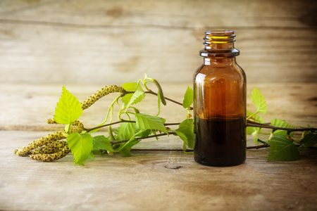 birch tincture in a small bottle and branches with fresh leaves isolated on a rustic wooden  background, medicinal herb for health and beauty, copy space, selected soft focus, narrow depth of field