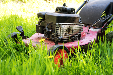 narrow depth of field: old lawn mower in tall grass, neglected gardening, selected focus, narrow depth of field