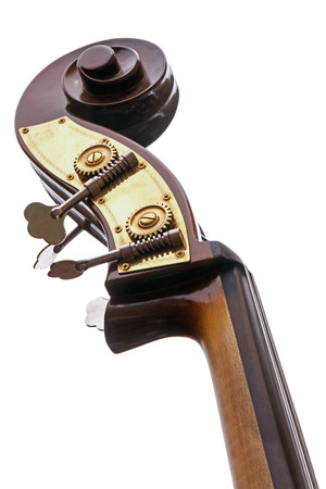 part of a double bass, musical instrument of the violin family with neck, head, tuning pegs and scroll, view from below, isolated on a white background