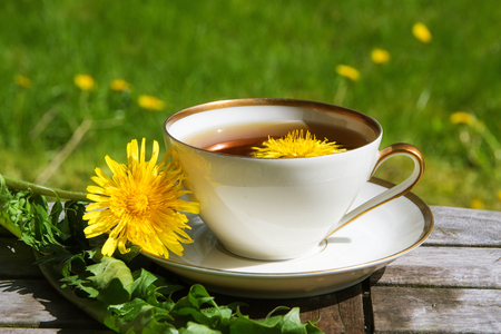 Dandelion tea in a white cup on a wooden table against a blurry dandelion meadow, selected focus, narrow depth of field