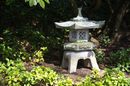 stone lantern in shadow between evergreen ground cover plants pachysandra, garden landscape design in Japanese style