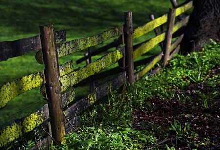 Wooden fence with moss and lichens on a pasture in the countryside, selected focus, very narrow depth of field
