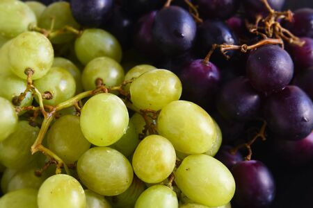 green and purple grapes as a food background, close up with selected focus and narrow depth of field