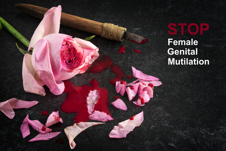 Stop female genital mutilation, cut rose blossom, blood and knife on a dark stone background with text, concept zero tolerance for FGM Фото со стока