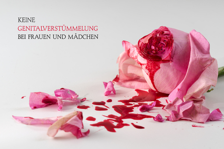cut rose blossom, blood and petals on a bright gray background with german text Keine Genitalverstuemmelung bei Frauen und Maedchen that means  No Female Genital Mutilationn,  concept for international day 6 february