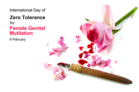 tolerancia: cut rose blossom, blood and knife isolated on a white background with text International Day of Zero Tolerance for Female Genital Mutilation, 6 February, concept for human rights