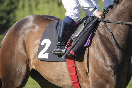 jockey in the saddle at a horse race with the starting number two, selected focus