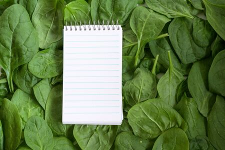 tear-off notepad for recipe or shopping list on a full frame background from fresh organic spinach leaves, copy space, high angle top view from above