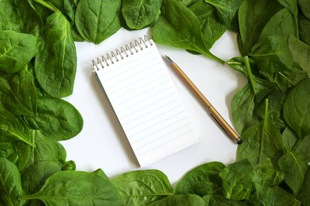 fresh spinach leaf frame and writing pad for recipe or shopping list with copy space, background concept for cooking and kitchen themes, high angle top view from above