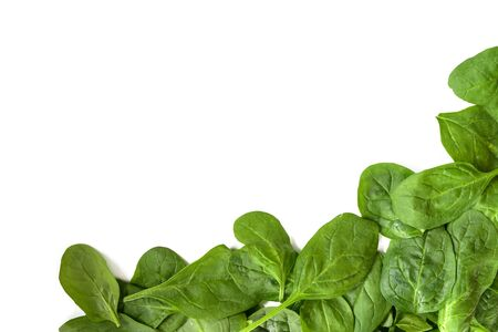 corner background from fresh spinach leaves isolated on white, copy space, high angle top view from above Stock Photo