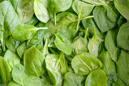 fresh organic spinach leaves, full frame background texture, high angle top view from above Stock Photo