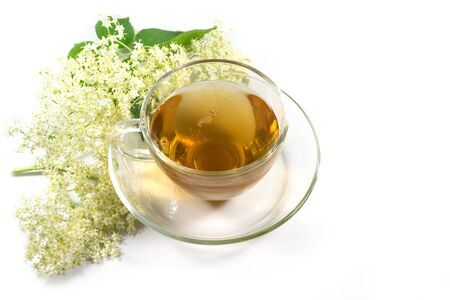 Elderflower tea in a glass cup with some blossoms isolated on a white background, natural home remedy against cold, flu and fever, copy space, selected focus